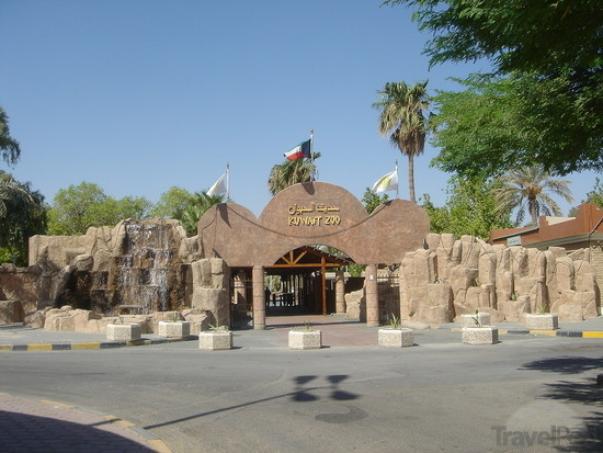 Kuwait-zoo-1-kuwait-city